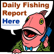 Daily Fishing Report